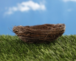 bigstock-Empty-nest-on-green-grass-44741620